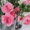 M: Poikien/unisex vaatteita... - viimeisin viesti lilas